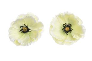 Květinová ozdoba FLOX vlčí mák bílý
